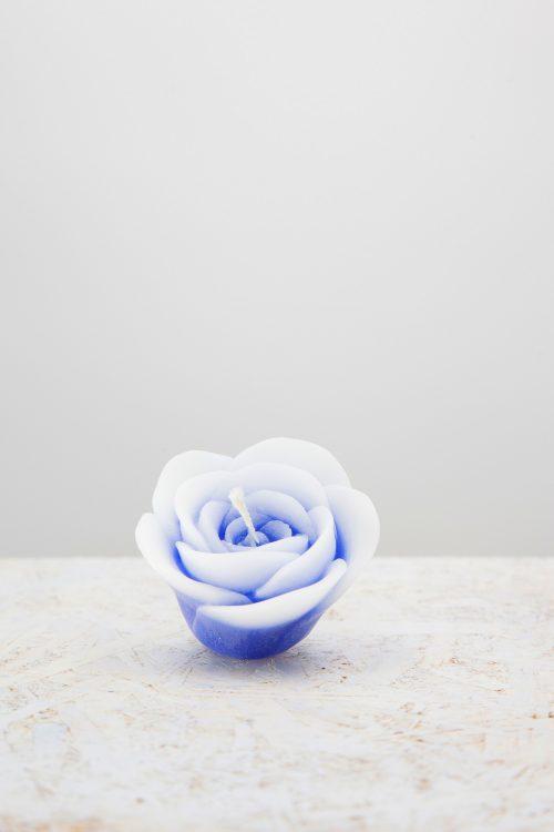 petalo armonioso A