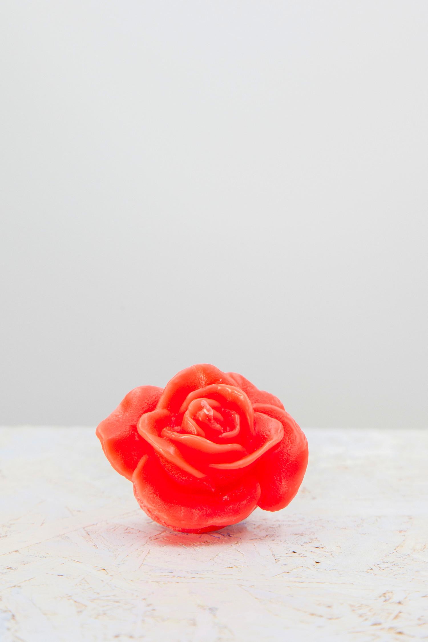 petalo luminoso rosso