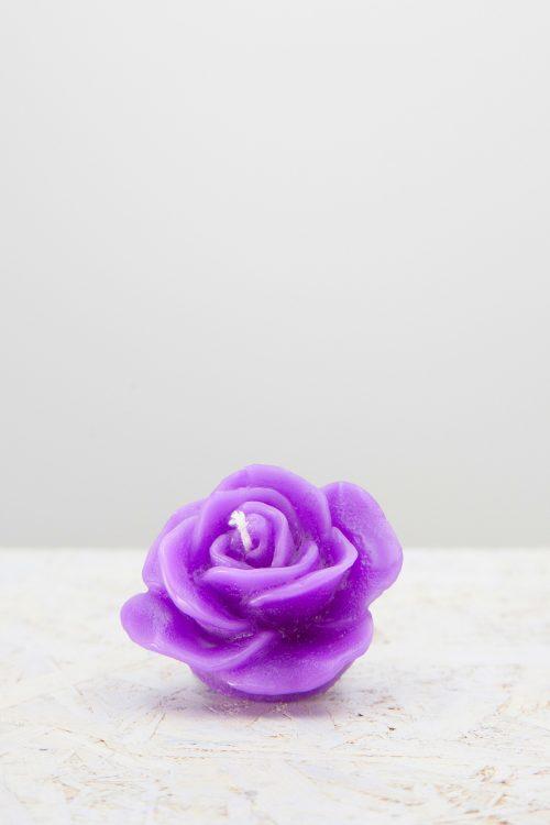 petalo luminoso viola
